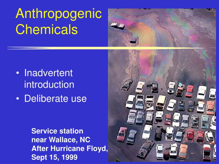 Anthropogenic