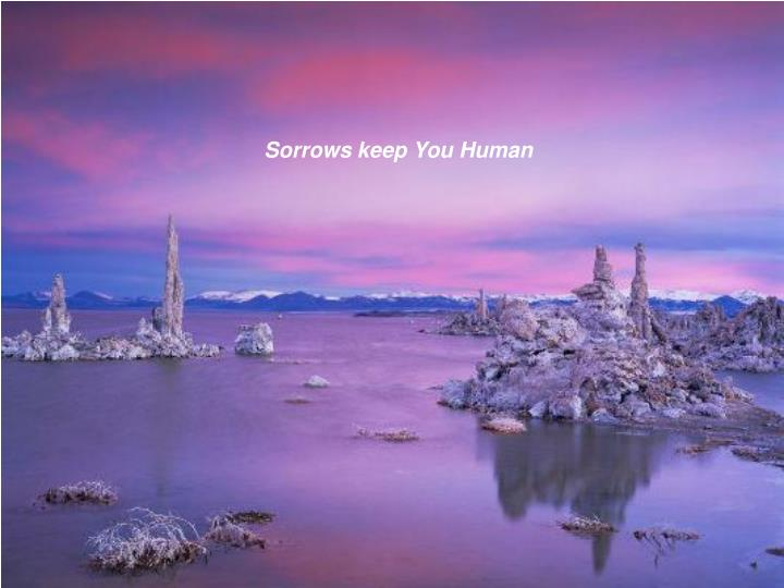 Sorrows keep You Human