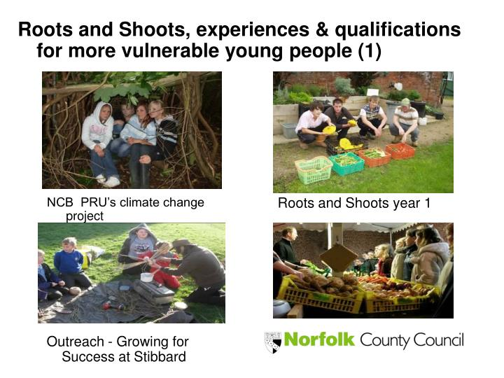 Roots and Shoots, experiences & qualifications  for more vulnerable young people (1)