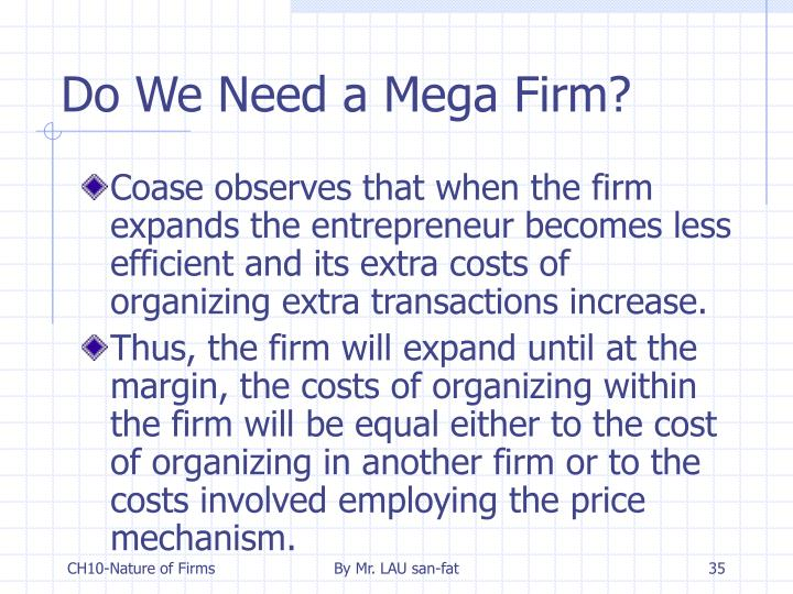 Do We Need a Mega Firm?