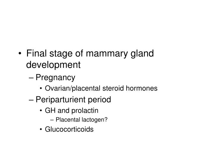 Final stage of mammary gland development