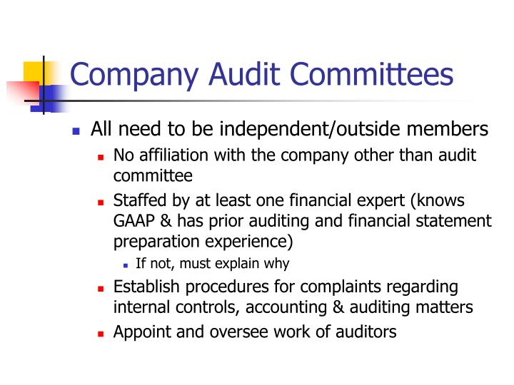 Company audit committees