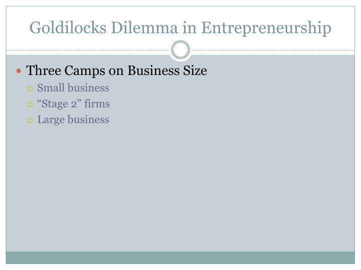 Goldilocks Dilemma in Entrepreneurship