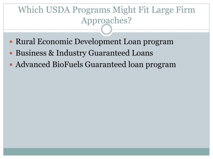 Which USDA Programs Might Fit Large Firm Approaches?