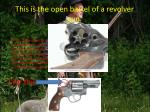this is the open barrel of a revolver gun