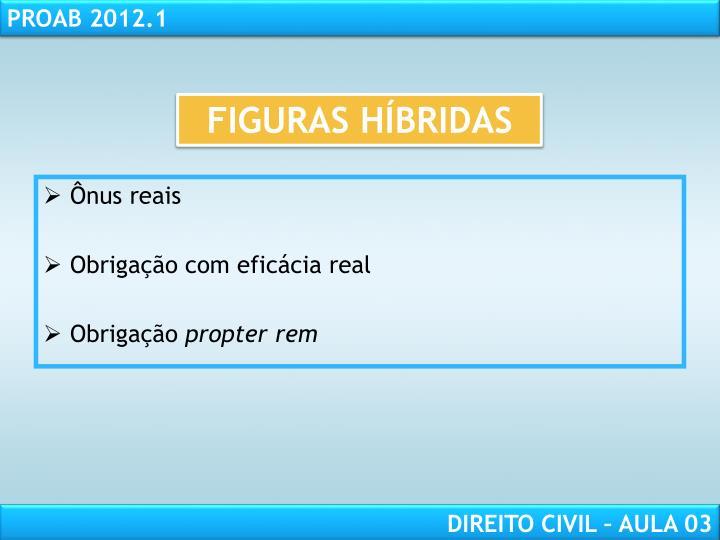 FIGURAS HÍBRIDAS
