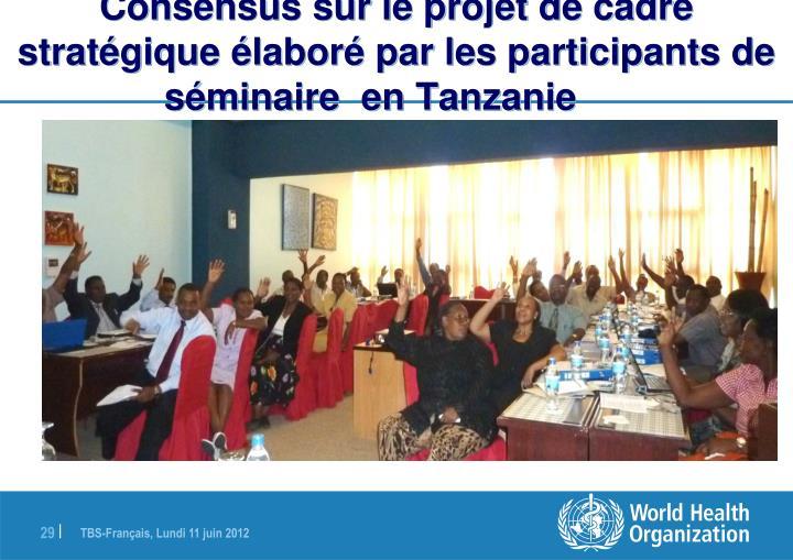 Consensus sur le projet de cadre stratégique élaboré par les participants de séminaire  en Tanzanie