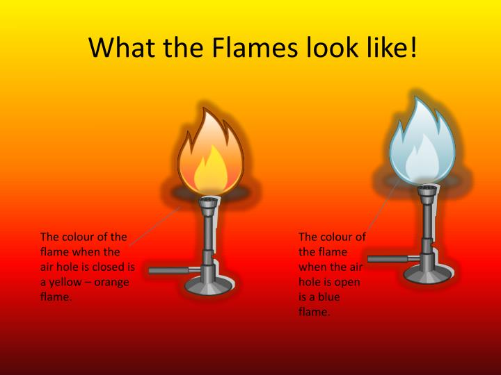 What the Flames look like!