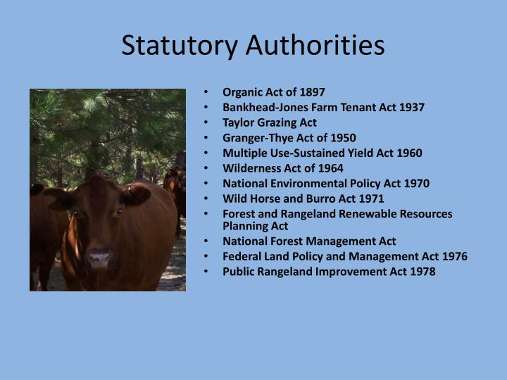 Statutory Authorities