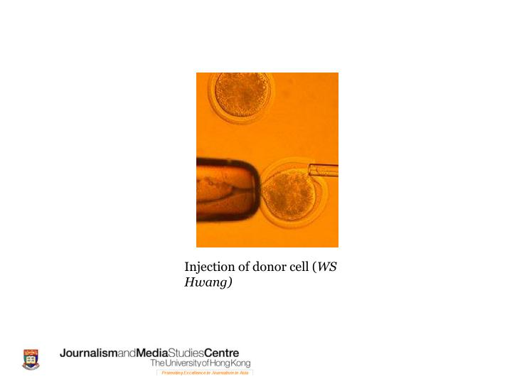 Injection of donor cell (