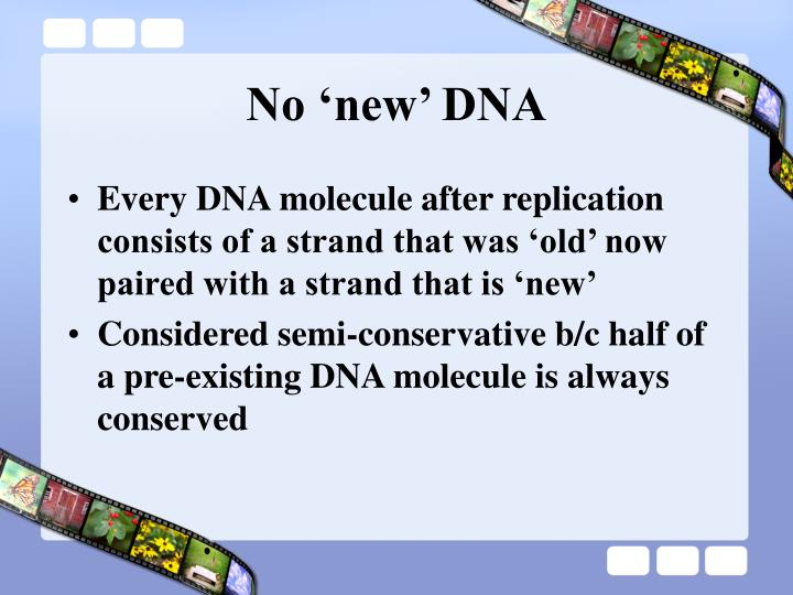 No 'new' DNA