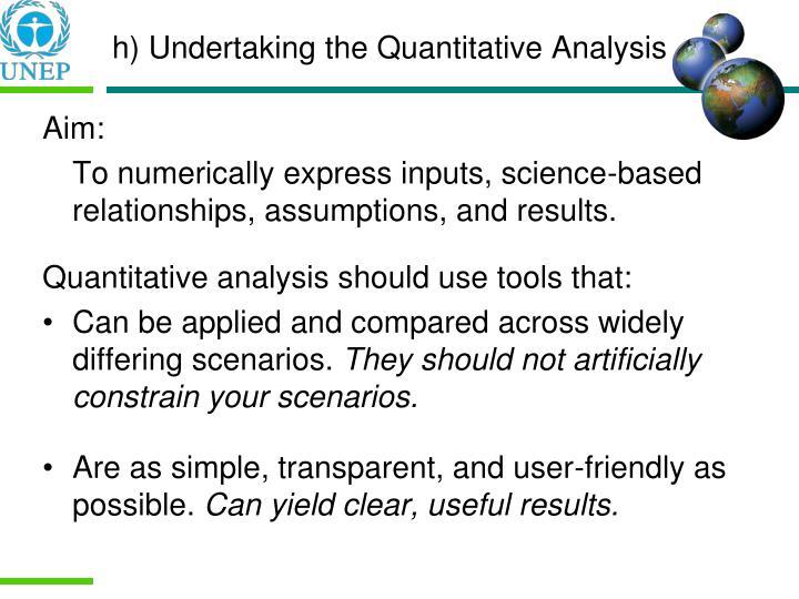 h) Undertaking the Quantitative Analysis