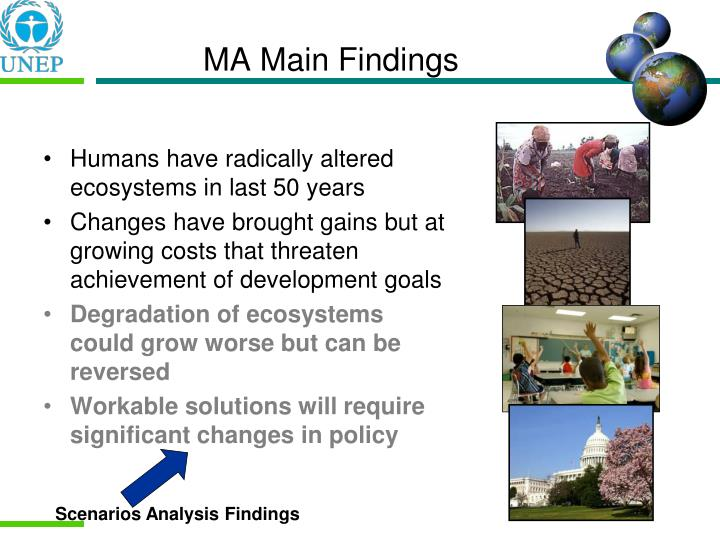 MA Main Findings