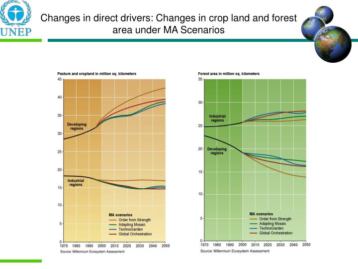 Changes in direct drivers: Changes in crop land and forest area under MA Scenarios