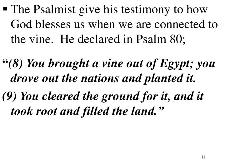 The Psalmist give his testimony to how God blesses us when we are connected to the vine.  He declared in Psalm 80;