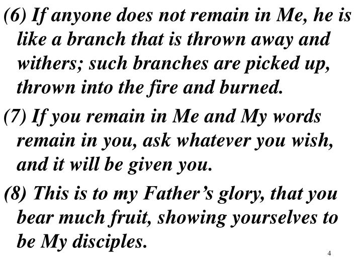 (6) If anyone does not remain in Me, he is like a branch that is thrown away and withers; such branches are picked up, thrown into the fire and burned.