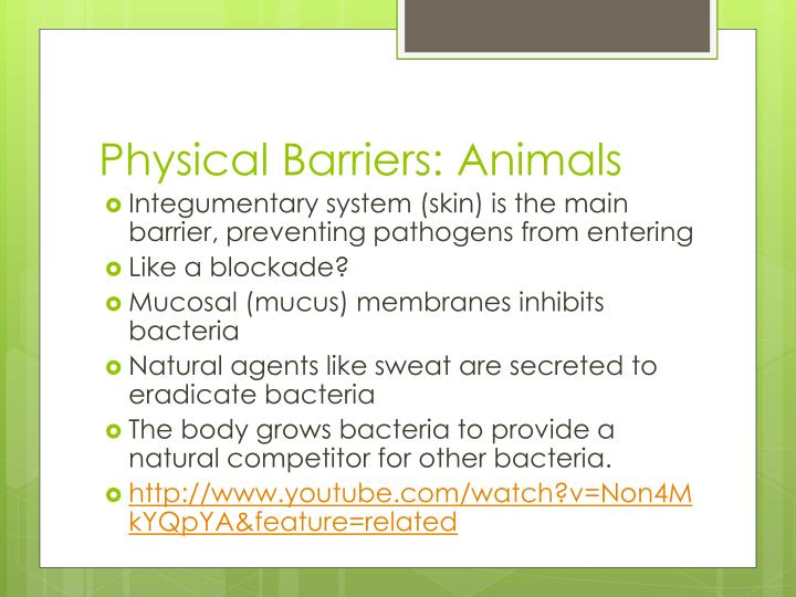Physical barriers animals