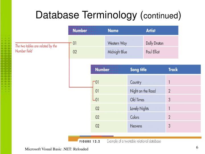 Database Terminology (