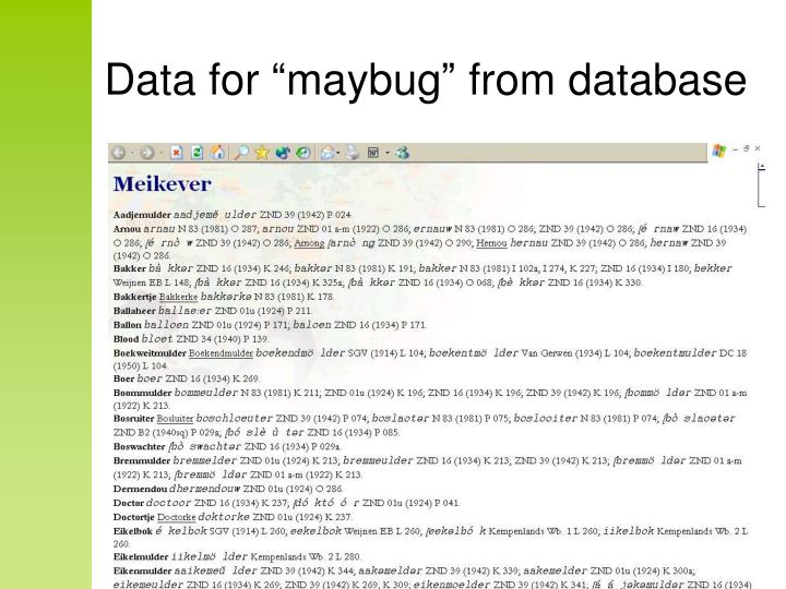"Data for ""maybug"" from database"