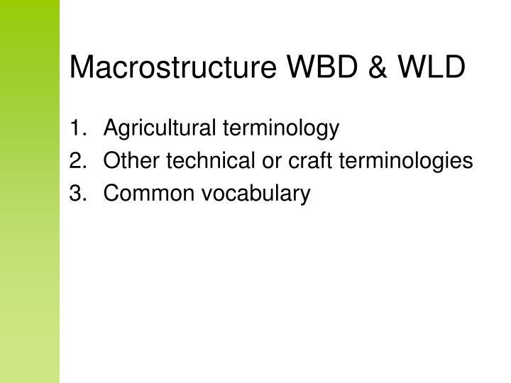 Macrostructure WBD & WLD