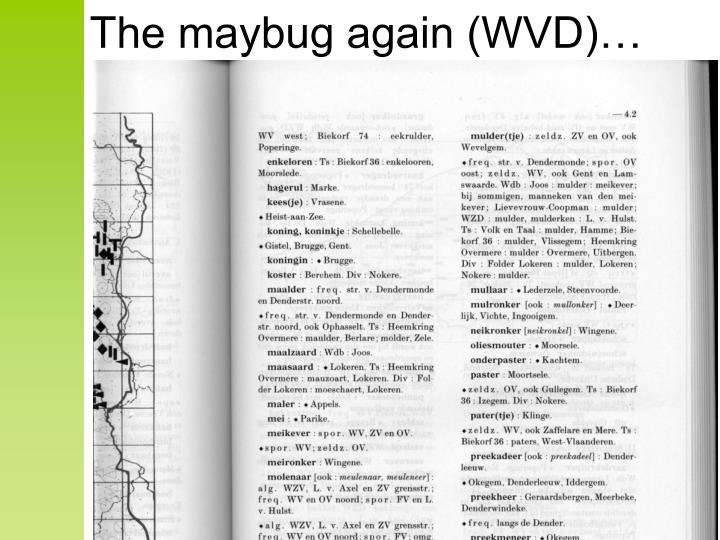 The maybug again (WVD)…