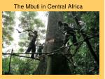 the mbuti in central africa