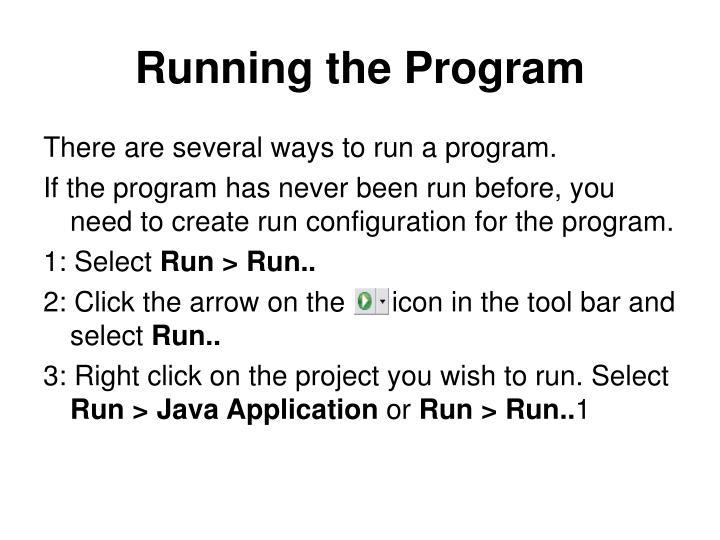 Running the Program