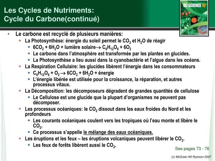 Les cycles de nutriments cycle du carbone continu