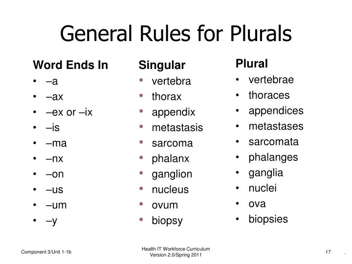 General Rules for Plurals