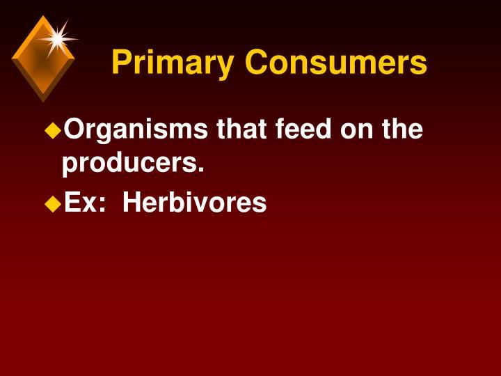 Primary Consumers
