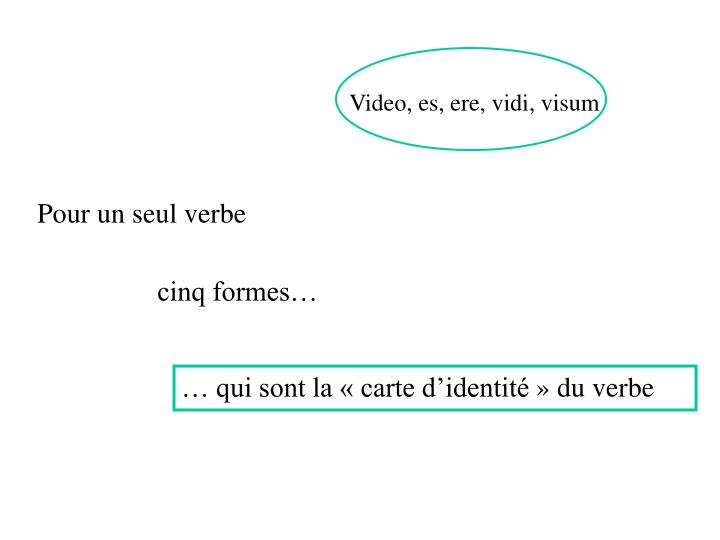 Video, es, ere, vidi, visum