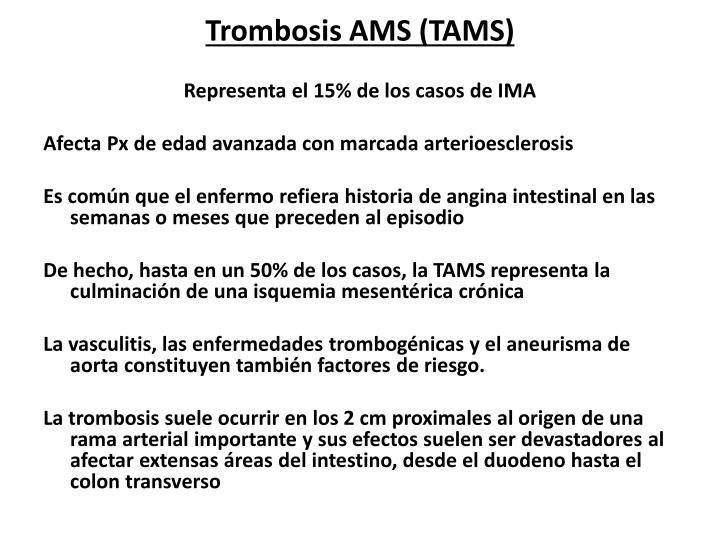 Trombosis AMS (TAMS)
