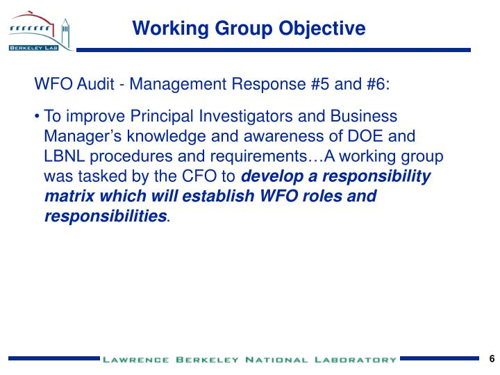 Working Group Objective