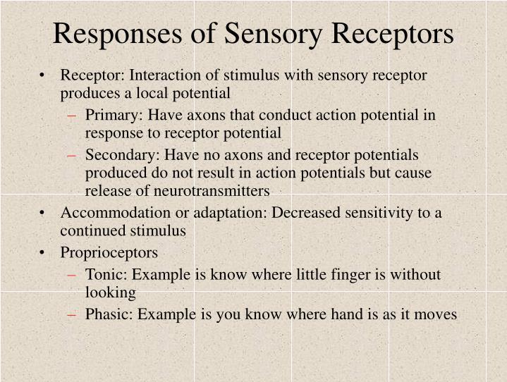 Responses of Sensory Receptors