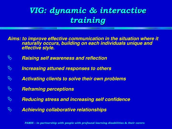 VIG: dynamic & interactive training