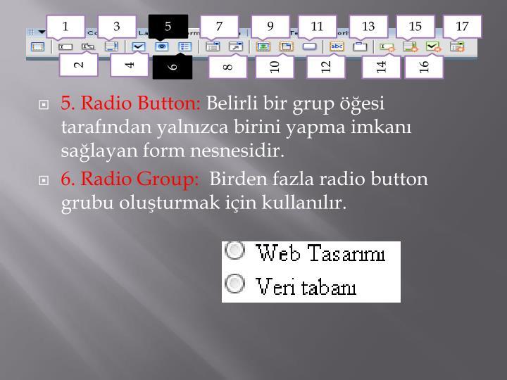 5. Radio Button: