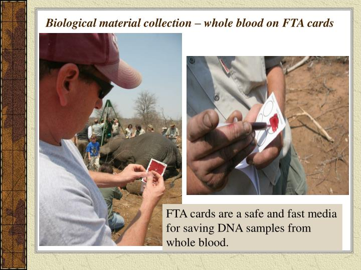 Biological material collection – whole blood on FTA cards