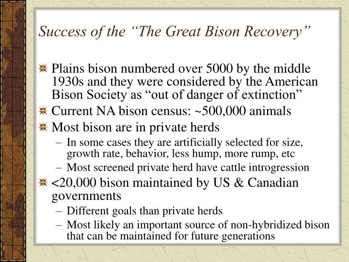 "Success of the ""The Great Bison Recovery"""