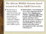 the african wildlife genome based research at texas a m university