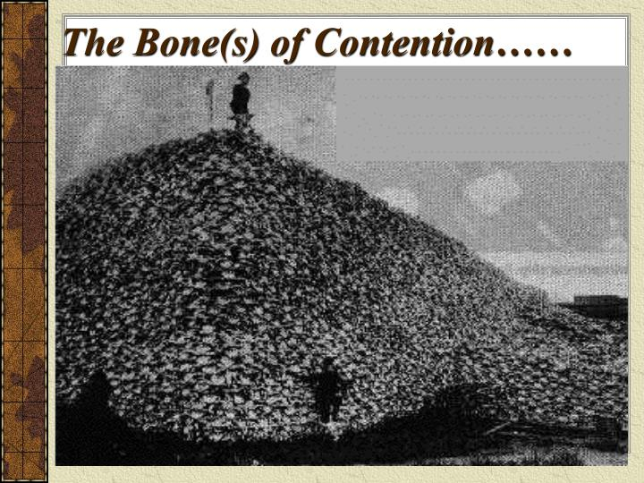 The Bone(s) of Contention……