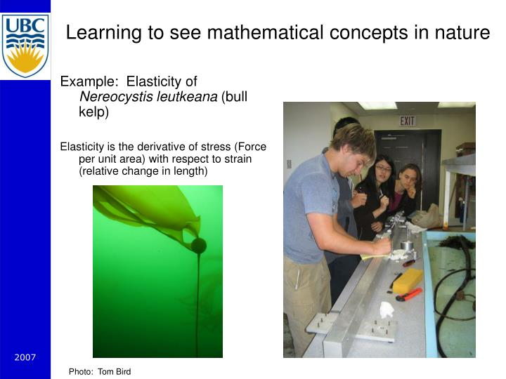 Learning to see mathematical concepts in nature