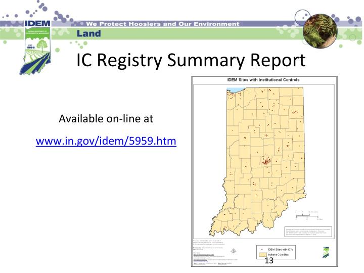 IC Registry Summary Report