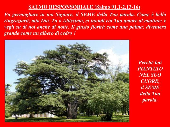 SALMO RESPONSORIALE (Salmo 91,1-2.13-16)