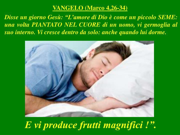 VANGELO (Marco 4,26-34)