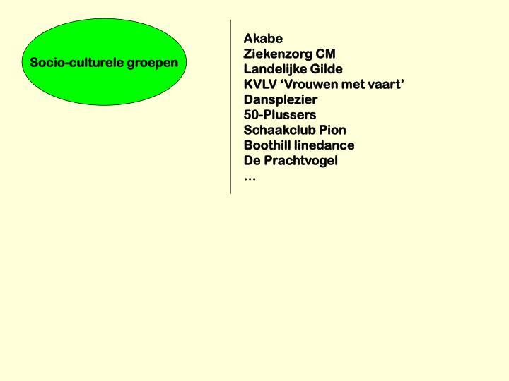 Socio-culturele groepen