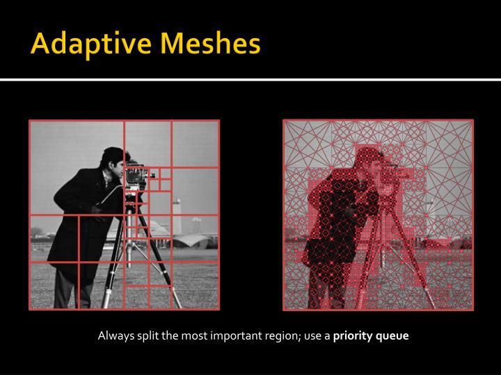 Adaptive Meshes