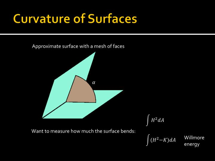 Curvature of Surfaces