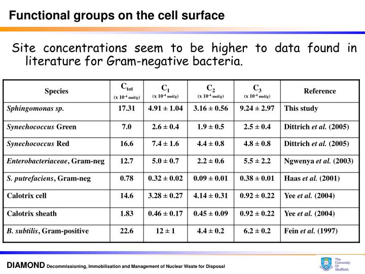 Functional groups on the cell surface