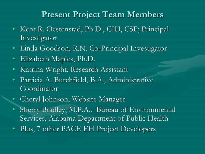 Present Project Team Members