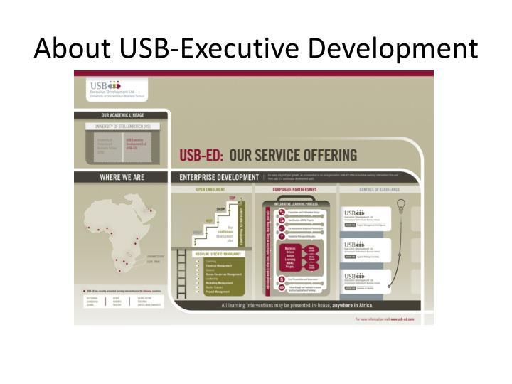 About USB-Executive Development